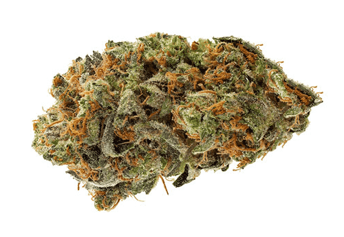 Buy Afghani Marijuana Strain UK