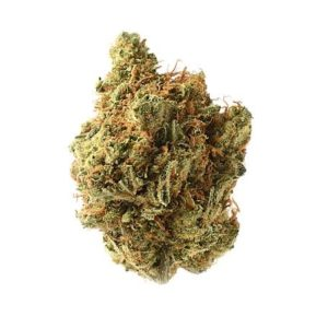 Buy Amnesia Haze Marijuana Strain uk