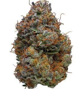 Buy BlackBerry Kush Marijuana Strain