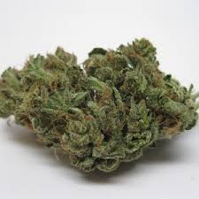 Buy Grapefruit Cannabis Strain